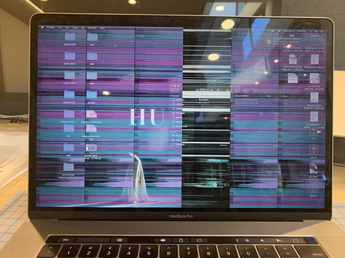 The Screen of a Mac Keeps Flickering
